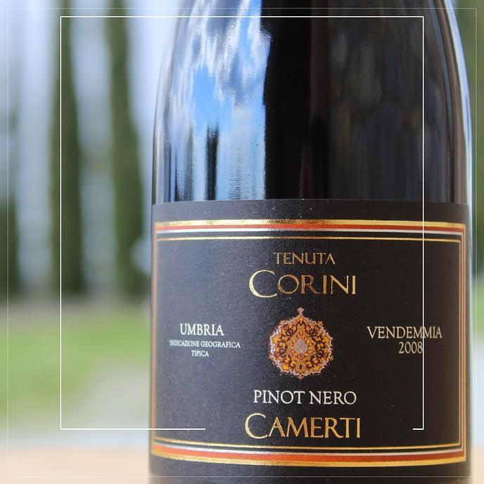 Camerti Vino Cantina Corini